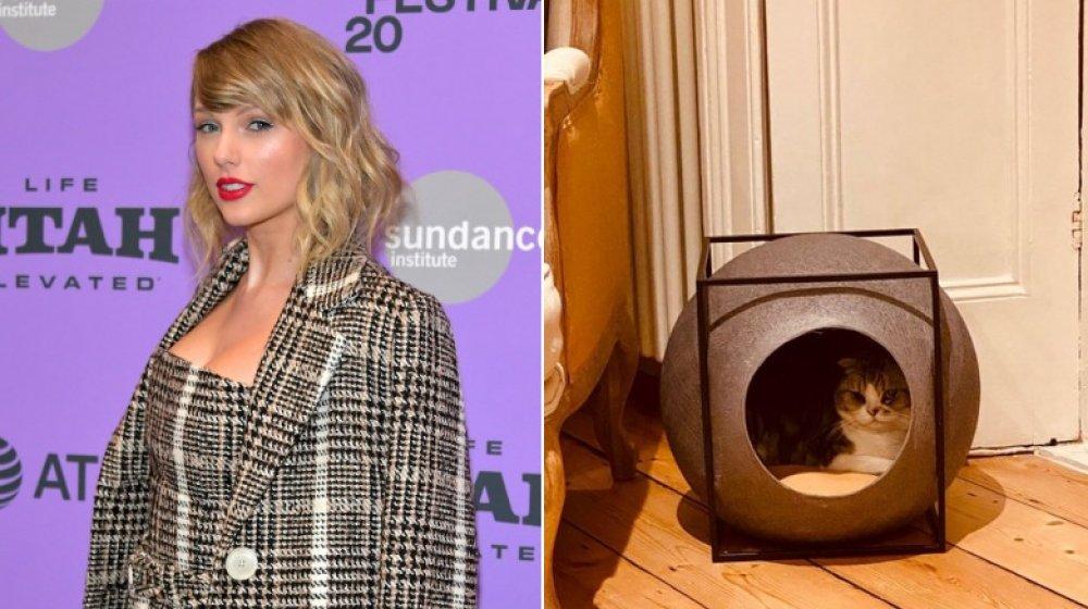 Taylor Swift y Meredith