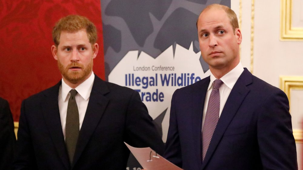 Príncipe Harry y William