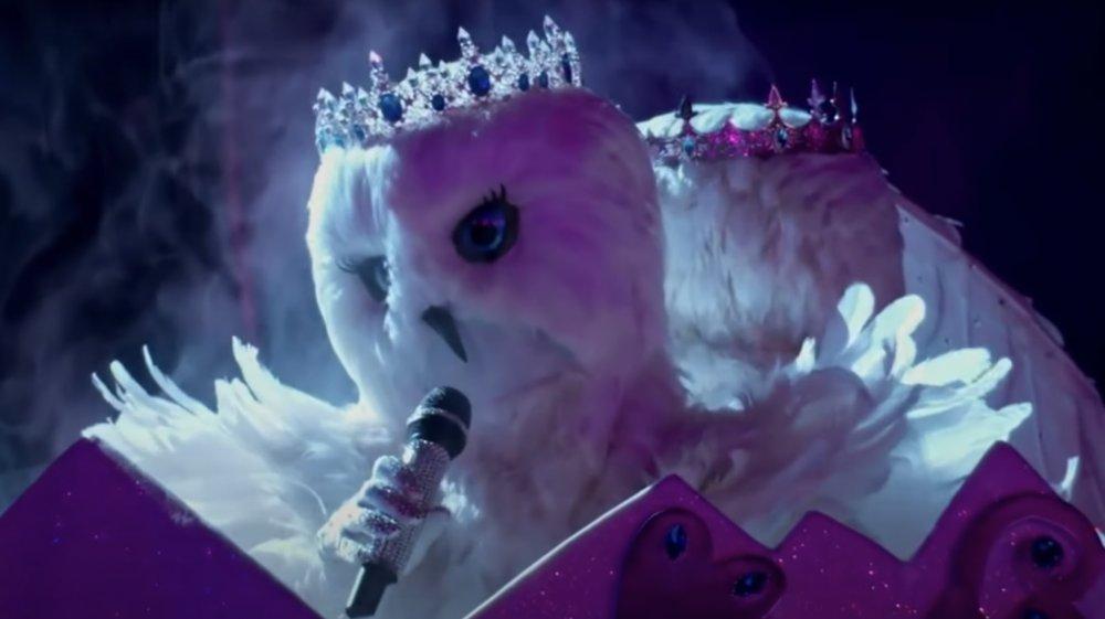 Búhos de nieve en el cantante enmascarado
