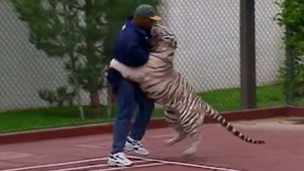 Mike Tyson luchando con su tigre