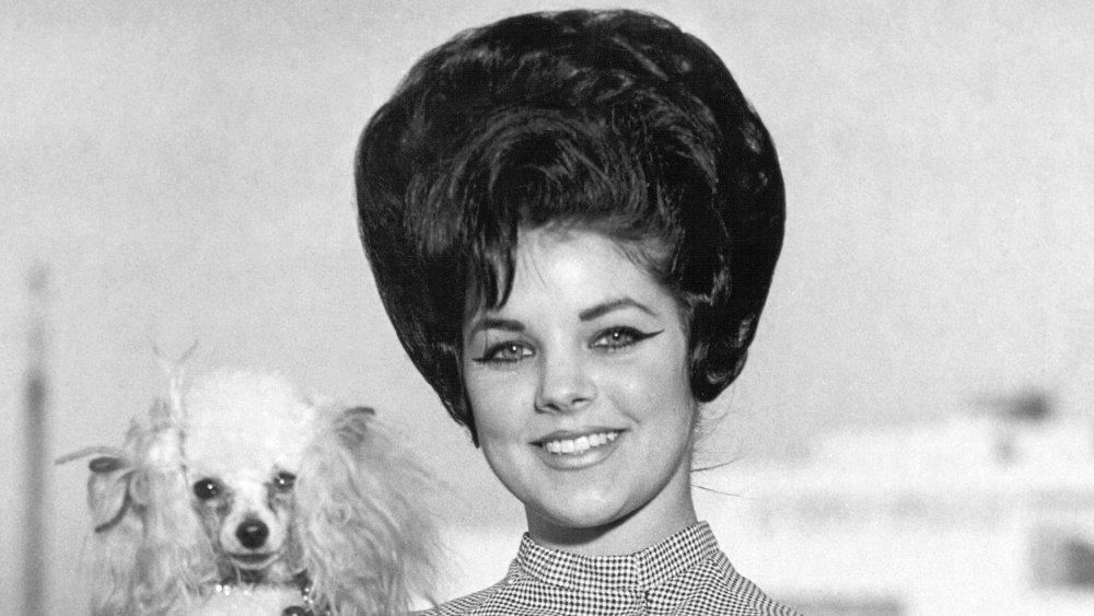 Priscilla Presley sostiene un caniche en Memphis en 1963
