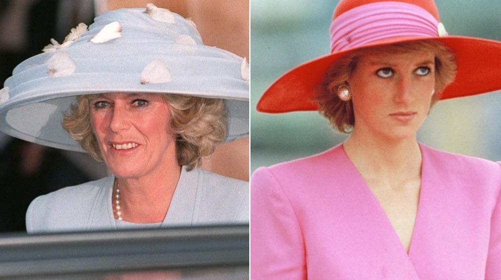 Camilla Parker Bowles, Princesa Diana
