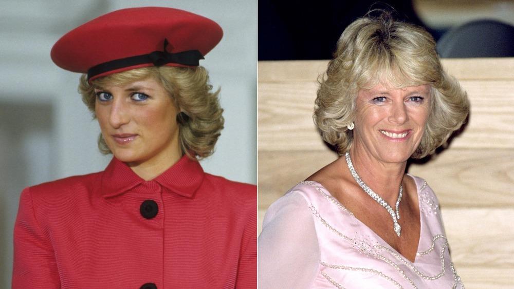 Princesa Diana, Camilla Parker Bowles