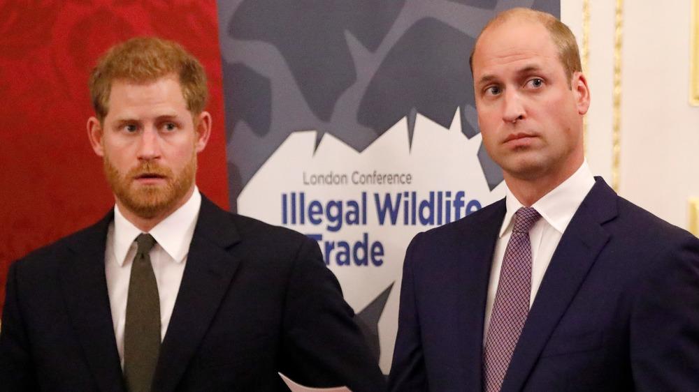El príncipe Harry y el príncipe William mirando a su izquierda.