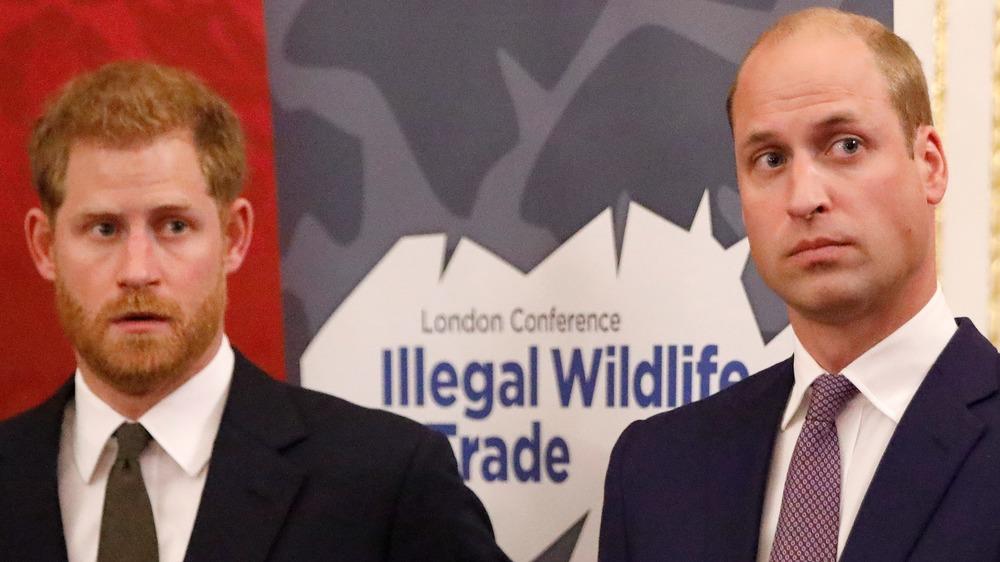 El príncipe Harry y el príncipe William mirando hacia un lado