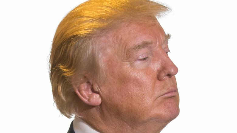 Donald Trump con melena naranja en 2015