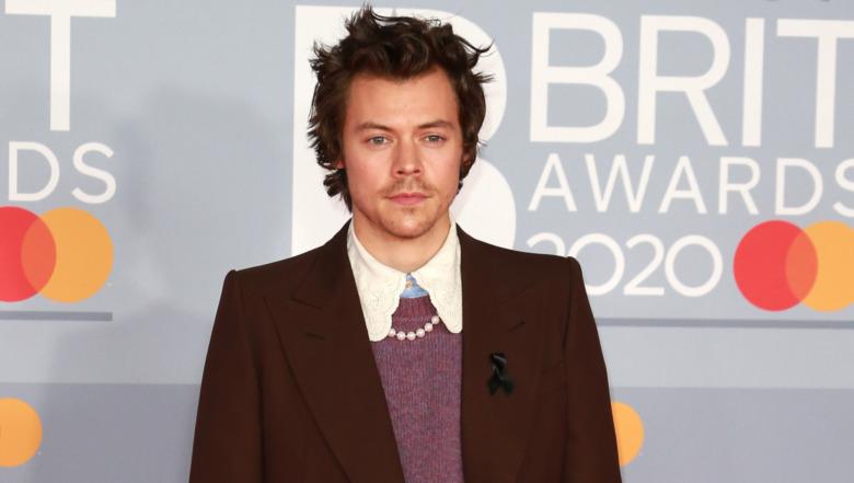 Harry Styles posando