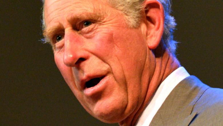 Príncipe Carlos hablando en el evento