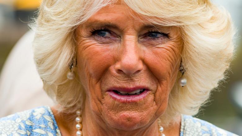 Camilla Parker Bowles sonriendo