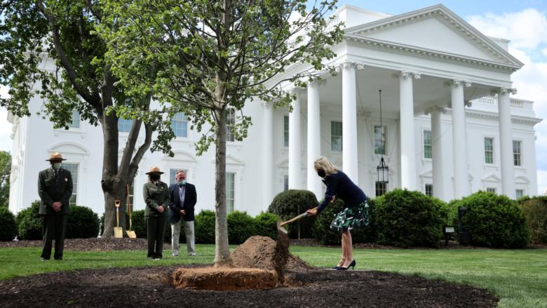 Dr. Jill Biden plantando un árbol en la Casa Blanca