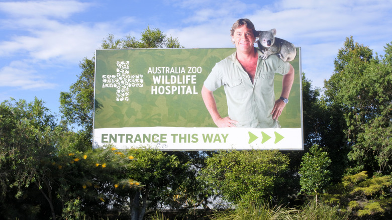 Australia Zoo Wildlife Hospital